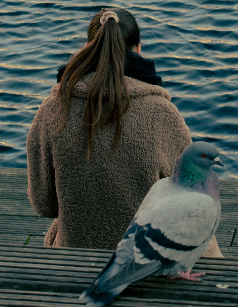 a girl and a large bird on a bench